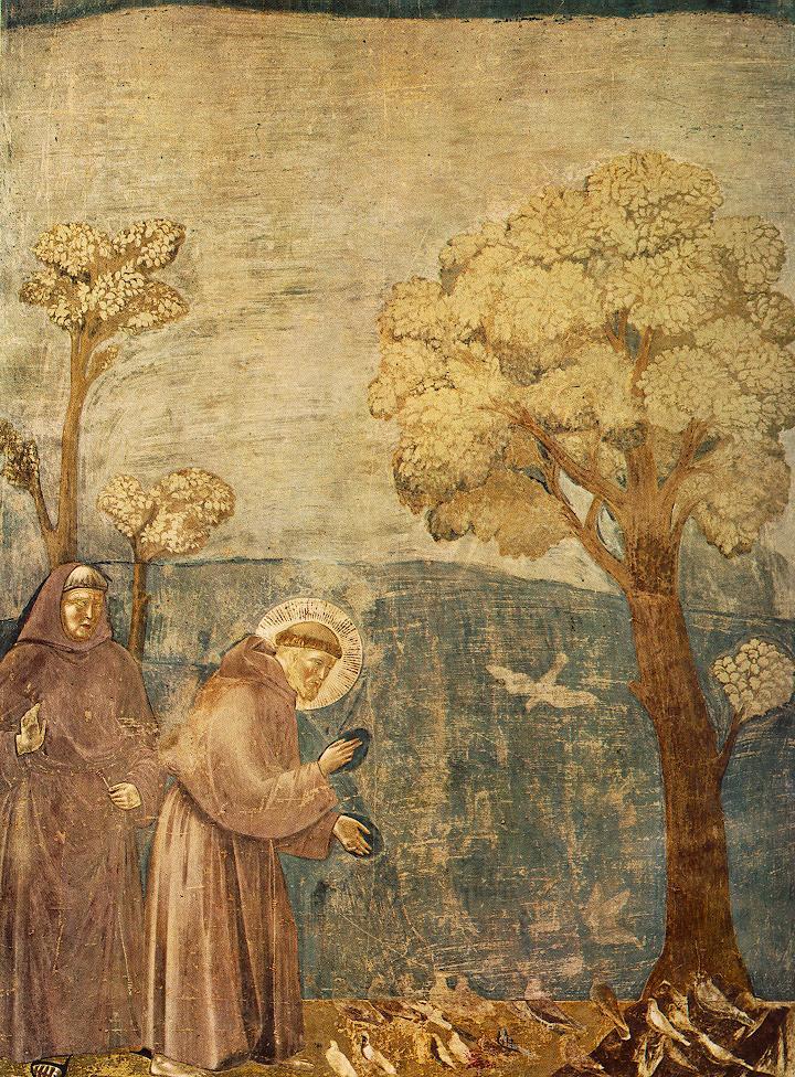 Sint Franciscus preekt voor de vogels van Giotto